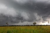 Storm Photos Page 4