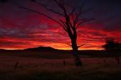 Sunrise & Sunset Gallery - Page 1